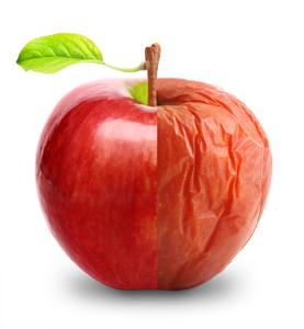 肌のハリに欠かせないターンオーバーは【リンゴ幹細胞】で