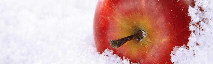冬の乾燥対策には『リンゴ』!内と外からのWアプローチを